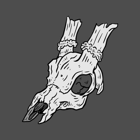 deer skull: Isolated black and white vector Deer skull