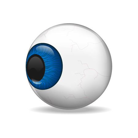 eye ball: Vector Eye ball with white background