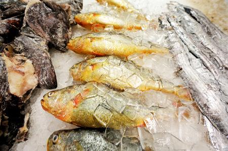 fischerei: Meeresfr�chte und Fischerei