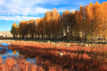 sichuan: Sichuan scenery
