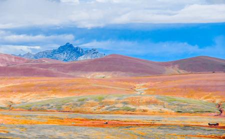 paisaje natural: natural landscape