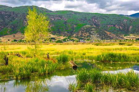 nature scenery: nature scenery