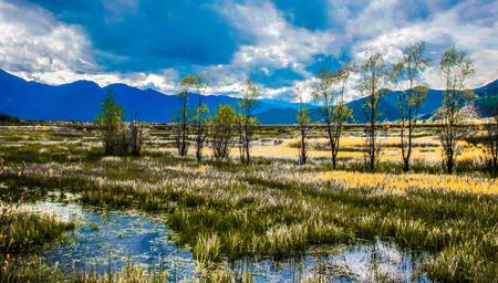 paisaje naturaleza: