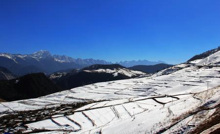 겨울 시즌