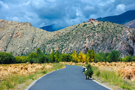 pastoral: pastoral scenery