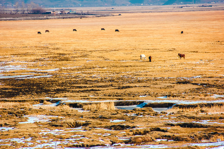 aden: western landscape Stock Photo