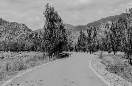 pastoral scenery: natural scenery