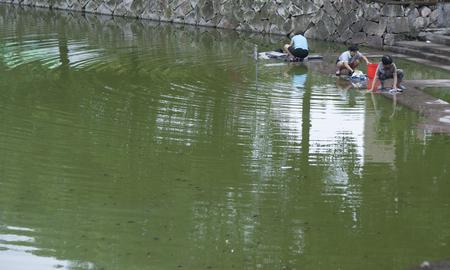 lavando ropa: mujeres lavando la ropa al lado del estanque