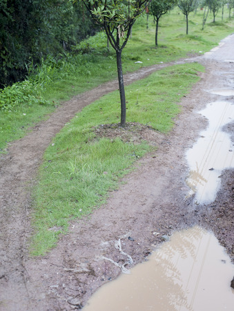 muddy: The dirt and muddy road