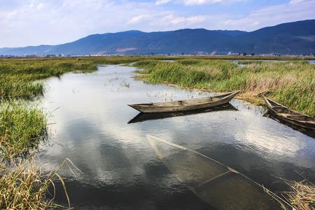 sunk: Wetland Stock Photo