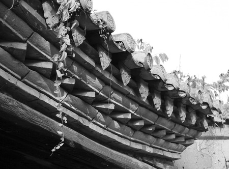 ancestral: Ancestral temple eaves