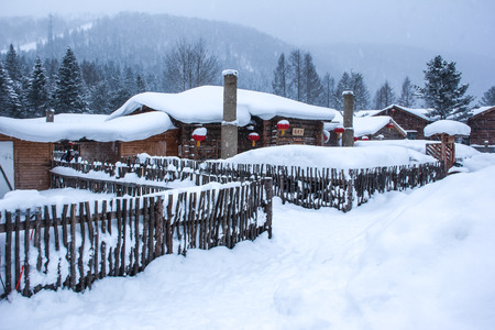 Village covered in snow