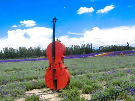 violin sculpture at lavendar field