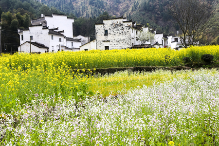 Vedute Wuyuan Archivio Fotografico - 82194349