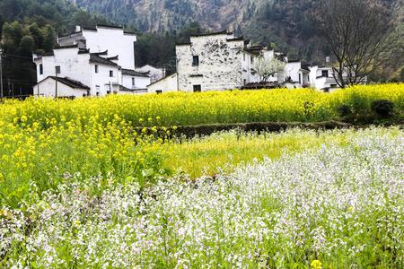 Wuyuan views Imagens