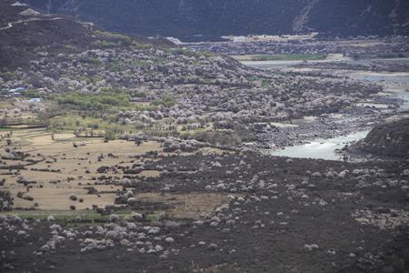 Linzhi Gorge