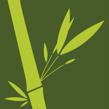Green bamboo leaf