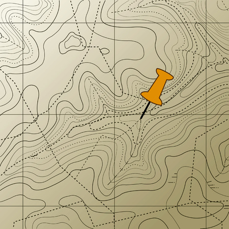 topography: A topographic map pattern on  background. Illustration