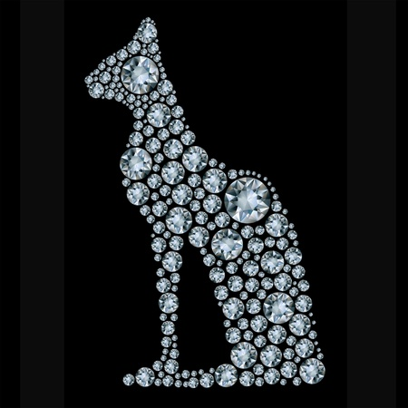 ornament  jewellery: shiny diamond cat on black background Illustration
