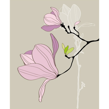 magnolia tree: Card with stylized magnolia