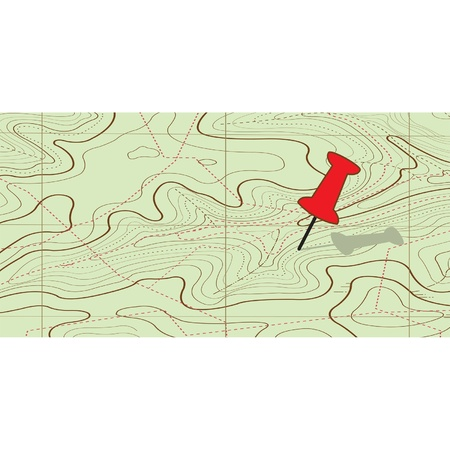 Abstract topographical map. vector  Vector