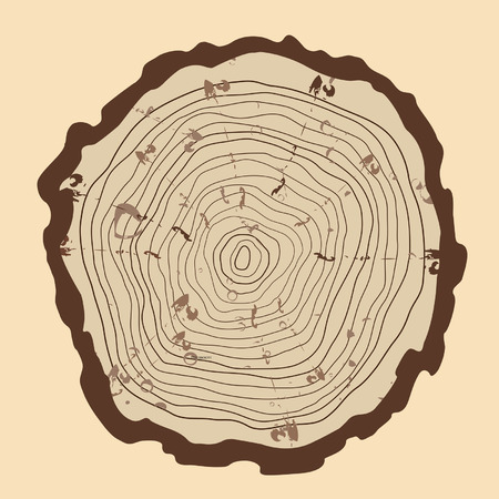 plywood: Tree rings  and saw cut tree trunk. vintage style