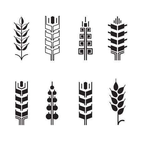 logo de comida: símbolos para los oídos de trigo para la insignia icono conjunto, las hojas de iconos, elementos de diseño gráfico