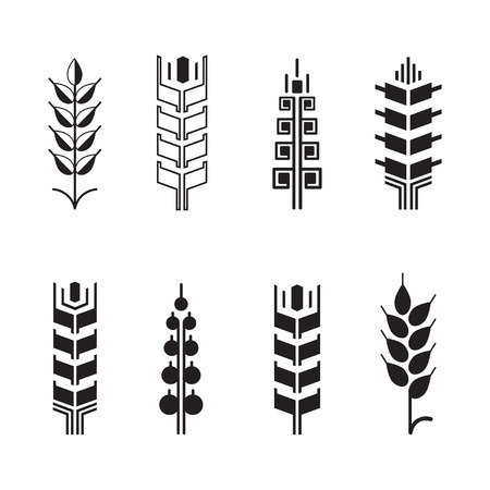 rice plant: Wheat ear symbols for logo icon set, leaves icons, graphic design elements Illustration