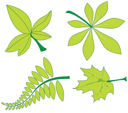 leave illustration Stock Illustration - 3484937