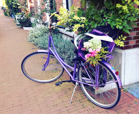 oma: purple bike with flowers Stock Photo