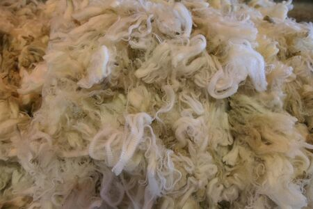 Close view of a large quantity of freshly shorn white wool from a sheep farm