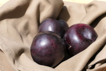 Looks like purple plums, but they are pluots or plumcots, a cross between plums and apricots Archivio Fotografico