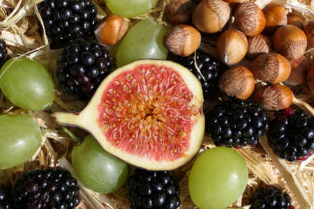 Autumn fruit composition with sliced fig, blackberries, grapes and nuts 版權商用圖片