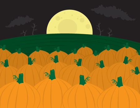 fall harvest: Pumpkin patch with large moon in the background.