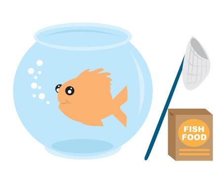 Goldfish with fish food and net.