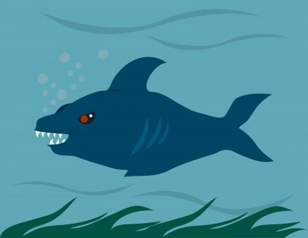 Shark swimming through the ocean. Vector