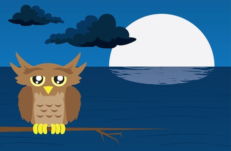 Nighttime scene with owl and moon reflected in the water Stock Vector - 11561717