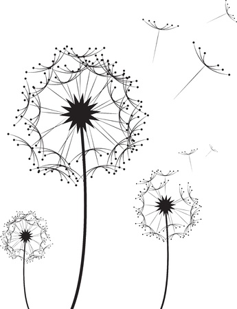 blowing dandelion: Three dandelion flowers blowing in the wind  Illustration