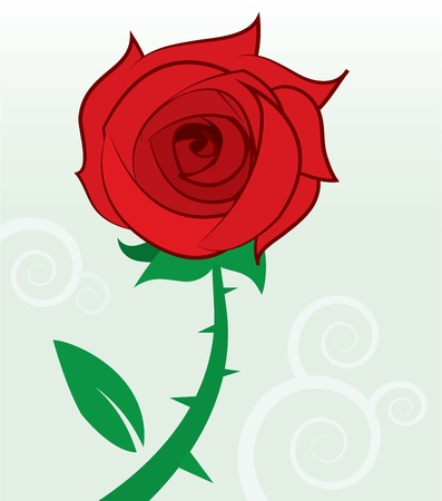 Single red rose with thorns and leaf