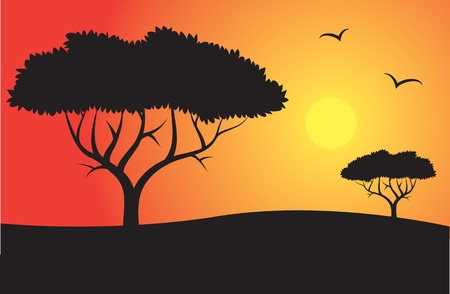 Safari Silhouette with trees and sun  Vector