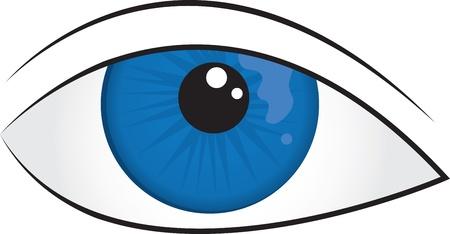 sensory perception: Isolated illustrated blue eye closeup