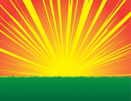 Sunburst sunset in grassy field   Illustration