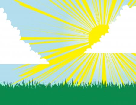 grass blades: Yellow sunburst background through the clouds  Illustration