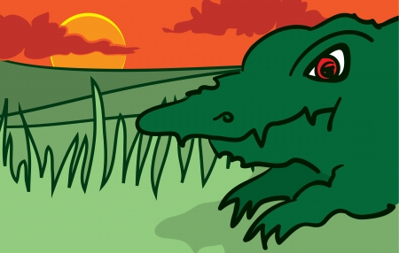 Cartoon Alligator in the grass on a hot day Reklamní fotografie - 15700904