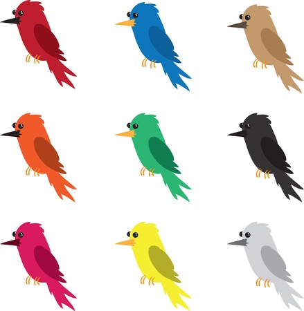 Nine different colored birds isolated
