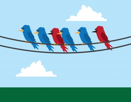 chirp: Various birds sitting on wire