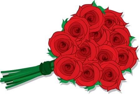 red rose: Isolated dozen roses grouped together  Illustration