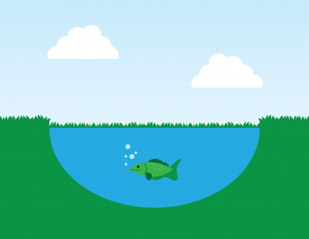 Fish in a pond with surrounding grass  Иллюстрация