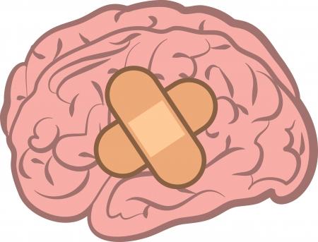 Cerveau isolé avec un bandage attaché Banque d'images - 20583991