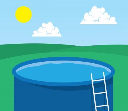 back yard: Empty pool in back yard